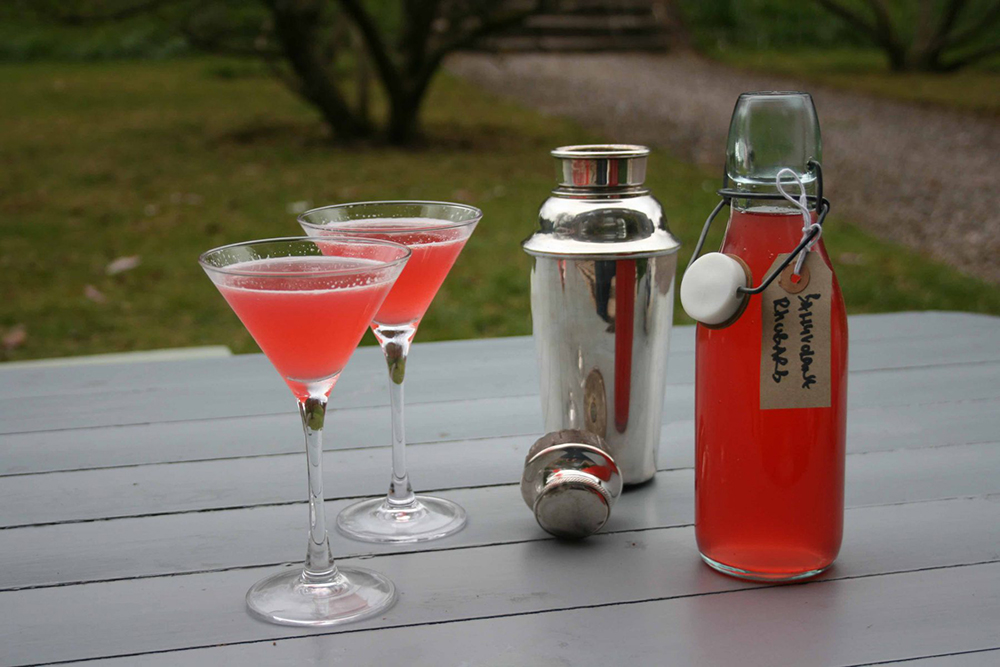 Fotó: www.thegannet.com